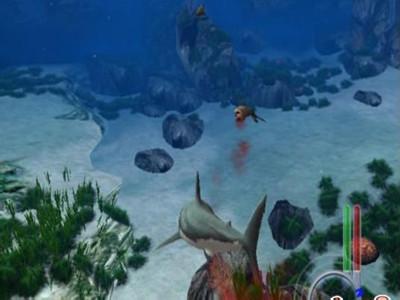 大白鲨游戏