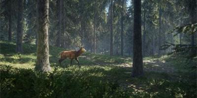 原始狩猎类单机游戏合集
