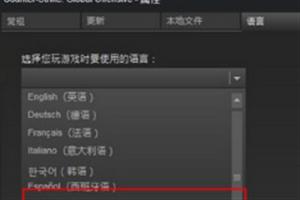 《赛博朋克2077》中文语音脏话版怎么设置