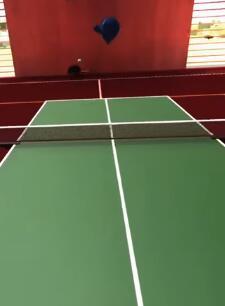 专业乒乓球 中文版