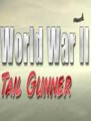 二战尾射手