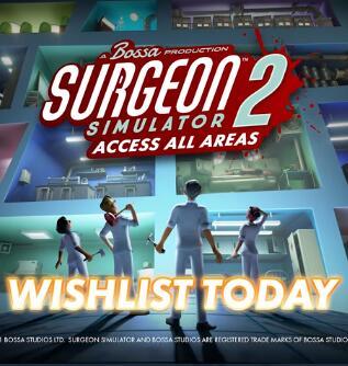 外科手术模拟2