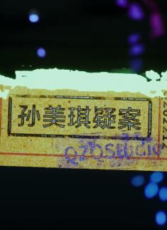 孙美琪疑案2022 中文版